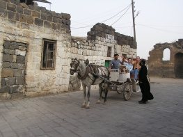 Fellow travelers viewing Bosra in style