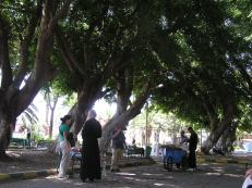 Park in Latakia where we hung out while waiting for someone to unlock the shrine to St. Thekla