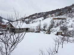 Snow in the village