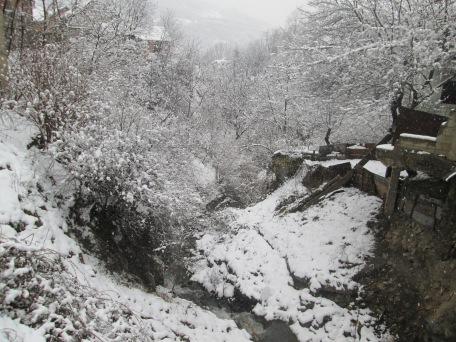 Winter walk02