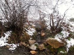 Winter walk43