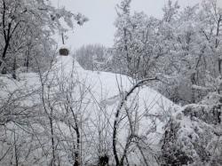 Winter walk45