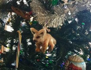 Desert Fox ornament