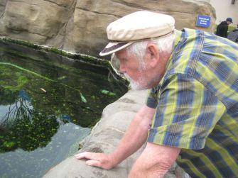 Papa looking at a tidal pool