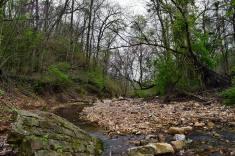 Southern Illinois stream