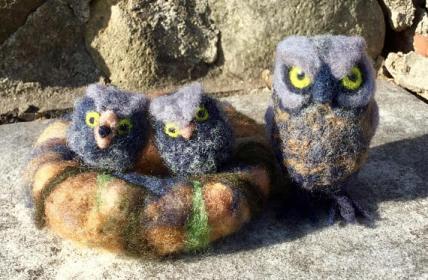 New Owl Family